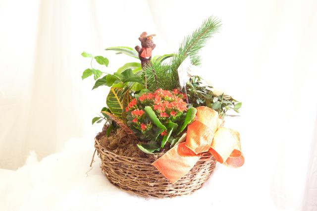 Holiday_Planter_Baskets_Port_Alberni.jpg