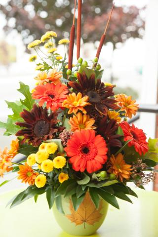 Thanksgiving-Port_Alberni_Flowers-2016-10-A.jpg